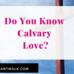 Calvary Love